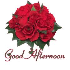 Good Afternoon Cood Red Rose Wallpaper Greetings